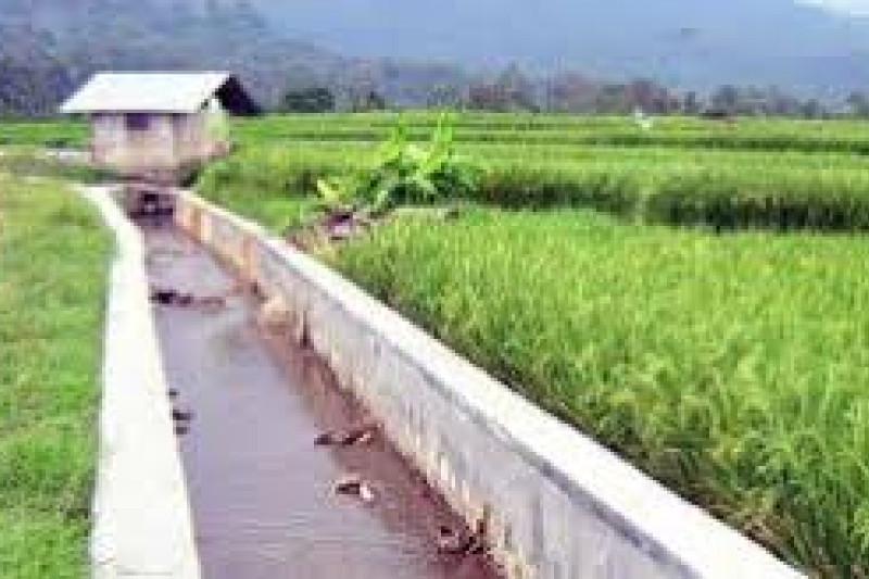 Pemkab  Lebak Rehabilitasi  27 Jaringan Daerah Irigasi (DI) Dukung Swasembada Pangan