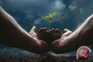 DLH Mukomuko Tanam Ribuan Pohon Di Air Dikit