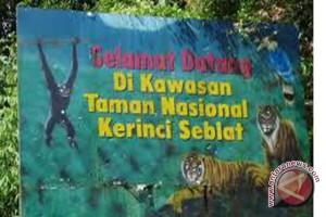 Bengkulu Ambil Alih Pembukaan Jalan Dalam TNKS