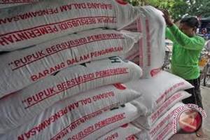 Dinas Pertanian Rejanglebong ajukan penambahan pupuk bersubsidi