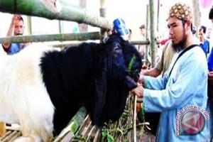 Mukomuko dorong petani manfaatkan susu kambing PE