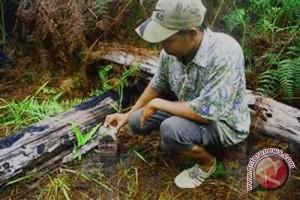 Mukomuko Usulkan Batas Bengkulu-Sumbar Di Sungai Semeluk