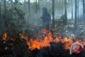 Kebakaran hutan Batam terbesar sejak 1984