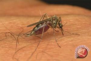 Seluma bebas malaria pada 2018