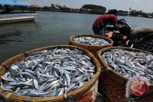 Mukomuko bangun los pasar ikan higienis