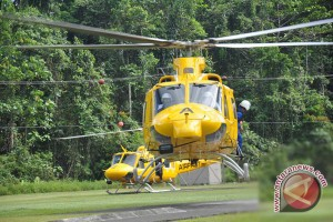 Evakuasi harimau sumatera butuh helikopter