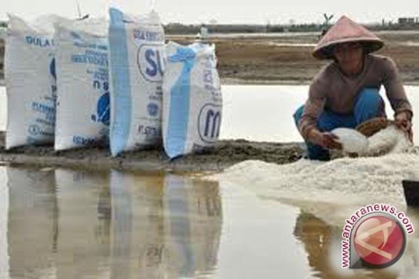 Menteri Susi: Cintai produk dalam negeri dengan membeli garam lokal