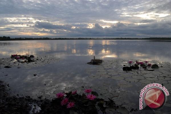 Walhi : kerusakan DDTS potensi bencana ekologis
