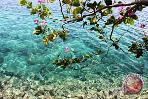Kepulauan Sula akan gelar festival Teluk Capalulu