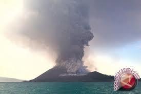 Gunung Anak Krakatau alami letusan 336 kali