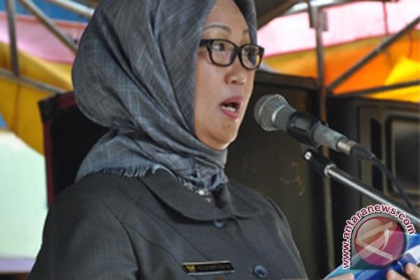 Wabup: Capai MDGs perlu perkuat Dasawisma dan Posyandu