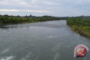 Sungai Di Mukomuko Buruk Tercemar Limbah Pabrik
