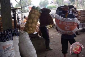 Petani sayuran berharap harga jual bisa stabil