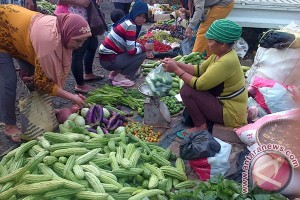 Harga sayuran di Mukomuko mulai naik