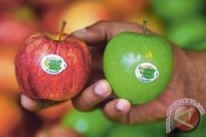 BPOM Bengkulu kesulitan uji sampel apel Amerika