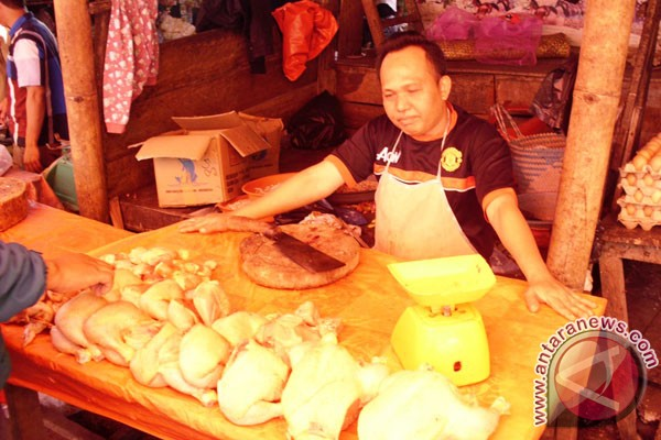 Harga daging ayam potong mencapai Rp40.000