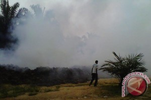 Mukomuko Tindak Lanjuti Laporan Terkait Pencemaran Udara