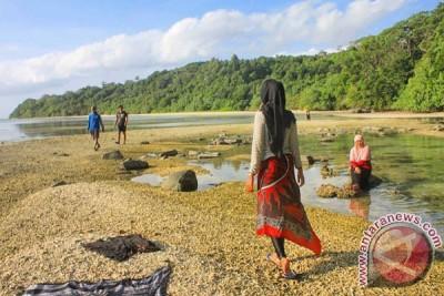 Hentikan penambangan terumbu karang Pulau Enggano