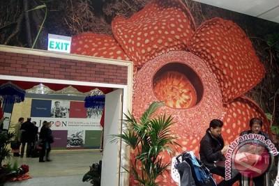 Foto Rafflesia arnoldii dipajang di Paris