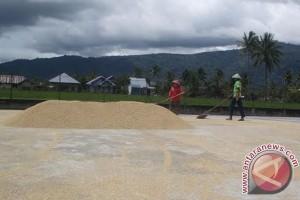 Harga beras di Rejanglebong naik Rp1.000/kg