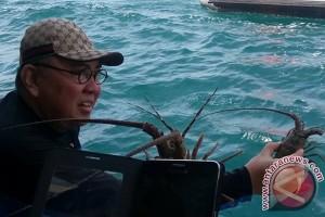 Gubernur: Penataan pesisir Bengkulu mendesak