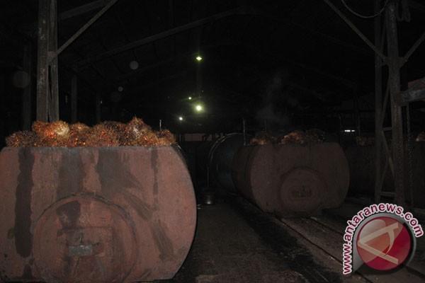Pemkab Mukomuko Awasi Aktivitas Pabrik CPO