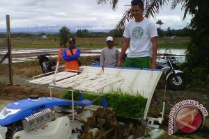 Pemkab tetapkan 20 kelompok tani penerima bantuan mesin tanam padi
