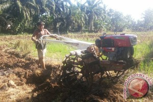 1.200 Hektare Lahan Dicetak Jadi Sawah