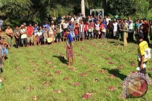 Warga Bengkulu pertahankan tradisi 'Cencang Kertok'