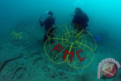Komunitas Find My Coral