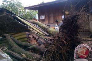 Angin kencang di Mukomuko, delapan rumah warga rusak