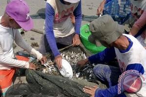 KUR harus menyasar ke petani dan nelayan