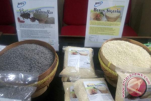 Bengkulu Selatan dorong peningkatan ketahanan pangan lokal