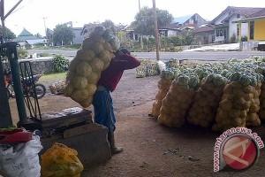 Harga jual beberapa jenis sayuran alami penurunan