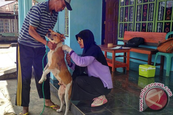 Rejang Lebong Vaksinasi 16.000 Hewan Penular Rabies