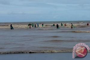 Limbah Batu Bara Cemari Objek Wisata Bengkulu