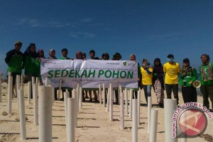 Akademisi : Mangrove Benteng Terbaik Pulau Tikus
