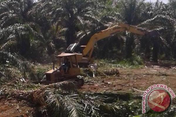 200 Hektare Lahan Mukomuko Dicetak Jadi Sawah