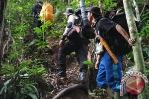 Relawan Bersihkan Jerat Harimau Di Hutan Seluma