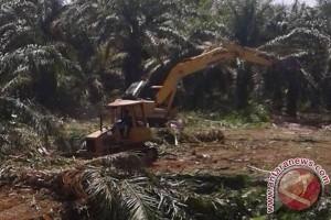 TNI Tambah Excavator Untuk Percepat Pencetakan Sawah
