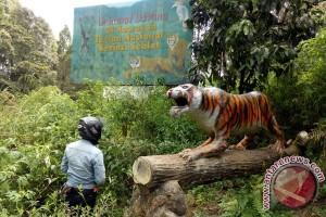Mukomuko Survei Lokasi Pembukaan Jalan Dalam TNKS
