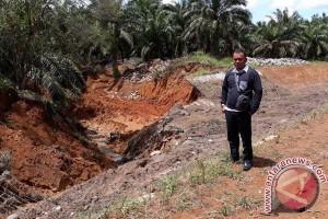 Irigasi Yang Jebol Mengancam Puluhan Hektare Sawah Di Mukomuko