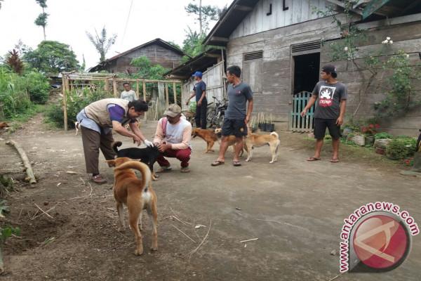 Distan usulkan penambahan dana eliminasi anjing liar