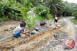 Pemkab Mukomuko gandeng perusahaan sawit bangun jalan rusak