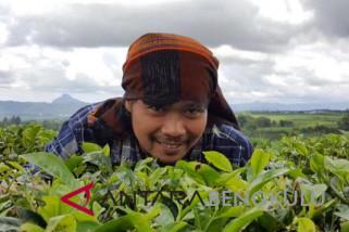 16 usulan hutan adat dari Bengkulu