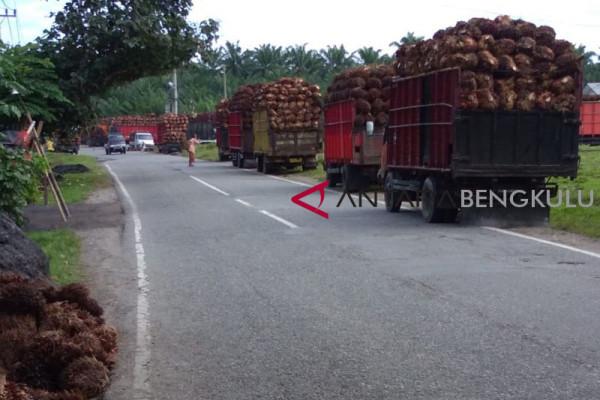 Harga sawit di pabrik Mukomuko naik