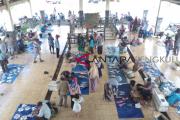 Harga ikan di Bengkulu Selatan masih tinggi