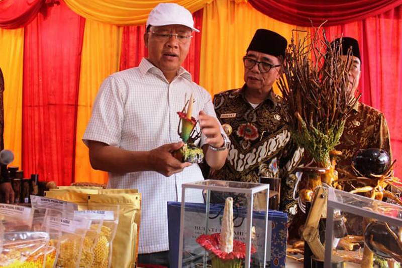 "Bengkulu gelar ""Mountain Valley Festival"" 2018"