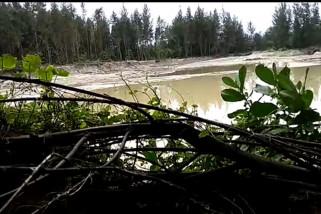 PLTU Teluk Sepang eksploitasi pasir TWA Pantai Panjang