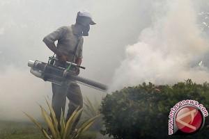 DPRD Imbau Pemkab Antisipasi Dini Penyebaran Zika
